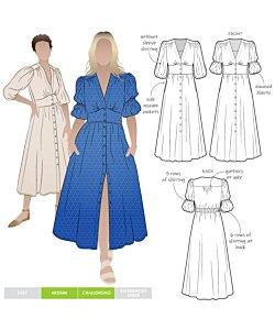 Style Arc Belle woven dress